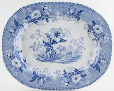 Elkin and Newbon Botanical Beauties Meat Dish or Platter c1845