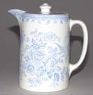 Jug or Pitcher Hot Water
