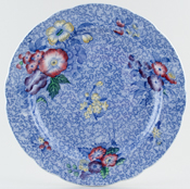 Spode Wild Flowers blue with colour Plate c1930s
